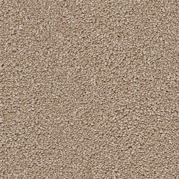 Cape Cod Dreamweaver Carpet Save 30 50