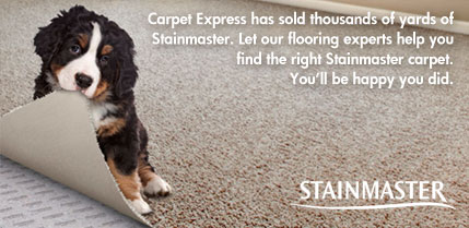 Stainmaster Carpet at Carpet Express