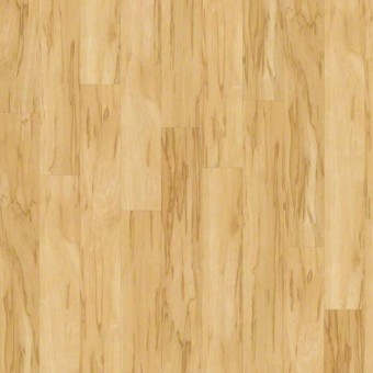 Classico Plank Plus - attached pad - Luce From Shaw Tile