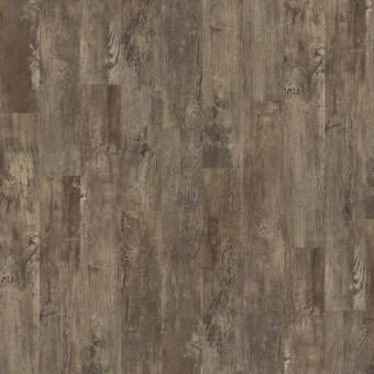 Premio Plank - Cortona From Shaw Tile