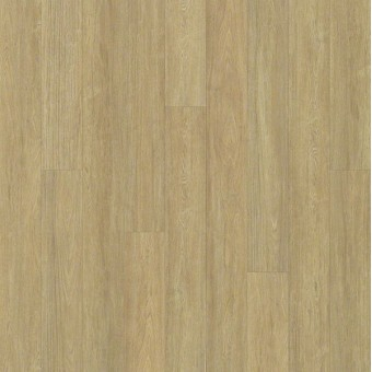 Alto Plank - Cervati From Shaw Tile