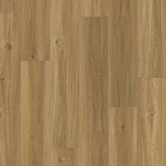 Prime Plank - Mellow Oak From Shaw Tile