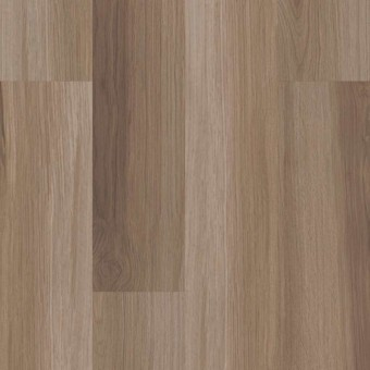 Endura 512C Plus - Hazel Oak From Shaw Tile