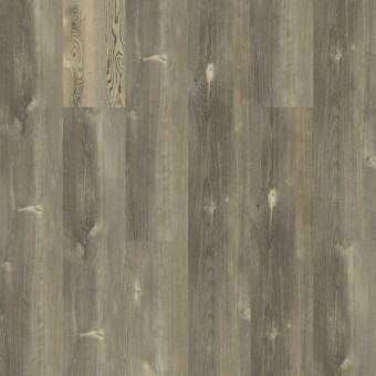 Blue Ridge Pine 720C HD Plus - Pitch Pine From Shaw Tile