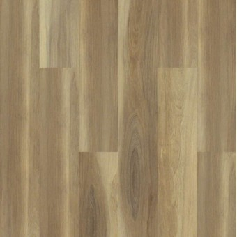 Cathedral Oak 720G Plus - Shawshank Oak From Shaw Tile