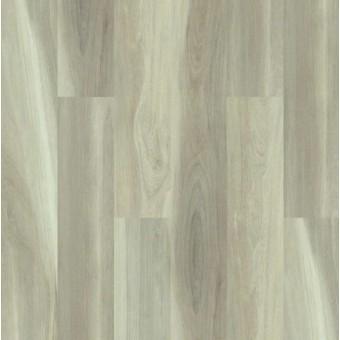 Cathedral Oak 720G Plus - Appalachian Oak From Shaw Tile
