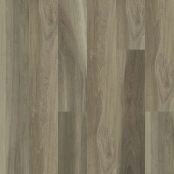Cathedral Oak 720G Plus - Chestnut Oak From Shaw Tile