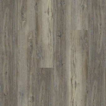 Heritage Oak 720C Plus - Silver Oak From Shaw Tile
