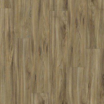 Impact 306C - Whispering Wood From Shaw Tile