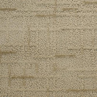 Pedemonte From Dixie Home Carpet