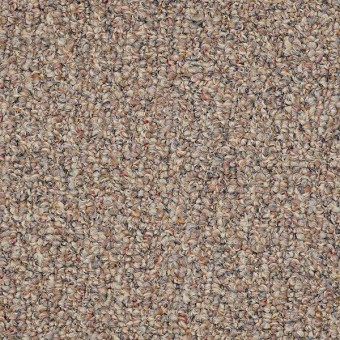 First Act - Autumn Leaf From Shaw Carpet