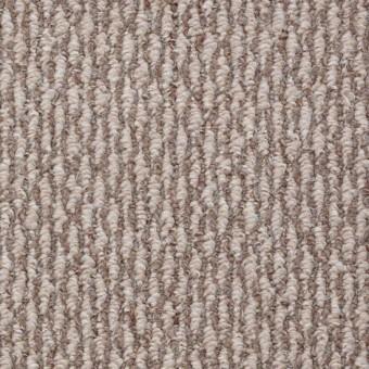 SPH695 - Kodiak From Shaw Carpet