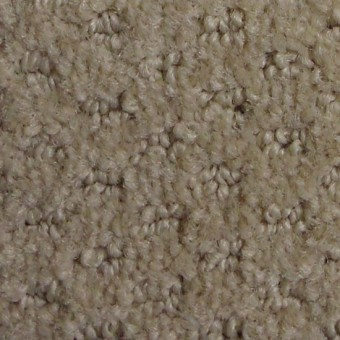 Town Crier II - Ash Blonde From Mohawk Carpet