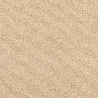 Town Center II 36 - Ash Blonde From Mohawk Carpet