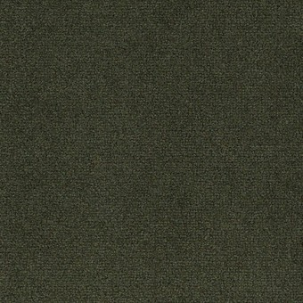 Town Center II 36 - Botanical From Mohawk Carpet