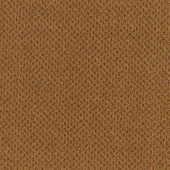 Jazz Pointe - Spice Box From Mohawk Carpet