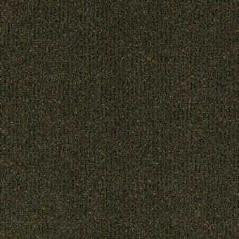 Jazz Pointe - Botanical From Mohawk Carpet