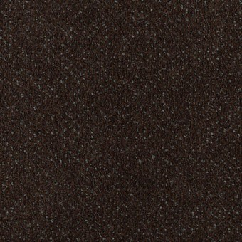 Jazz Pointe - Exotic Coffee From Mohawk Carpet
