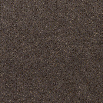 Jazz Pointe - Wrought Iron From Mohawk Carpet