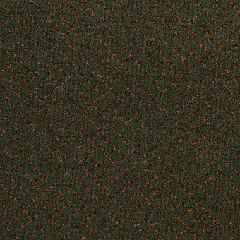 Classic Vision - Botanical From Mohawk Carpet