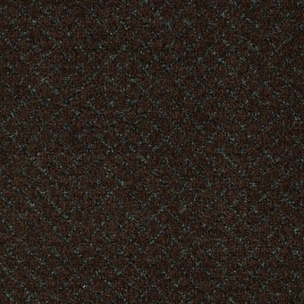 Classic Vision - Exotic Coffee From Mohawk Carpet