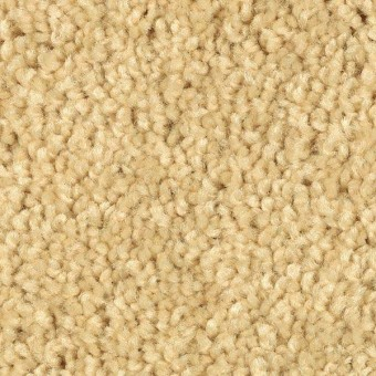 American Tradition - Firefly From Mohawk Carpet