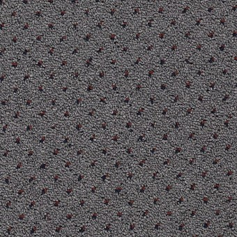Capital Port - Academy Gray From Mohawk Carpet