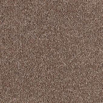 Harmony   Mohawk Carpet   Save 30-50%