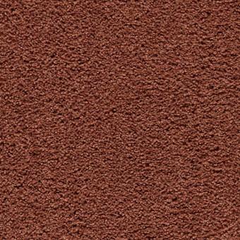 Cozy Comfort - Warm Autumn From Mohawk Carpet
