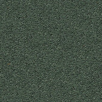 Cozy Comfort - Rolling Hills From Mohawk Carpet