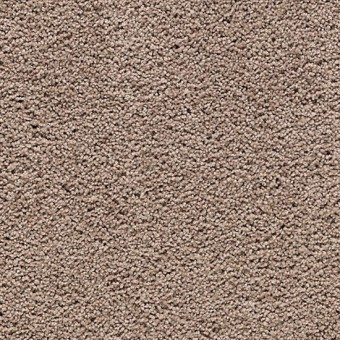 Cozy Comfort - Hazy Taupe From Mohawk Carpet