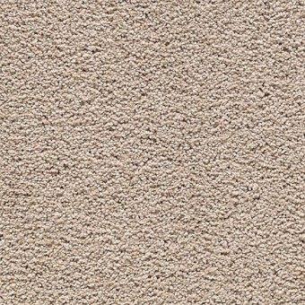 Cozy Comfort - Sequoyah Dusk From Mohawk Carpet