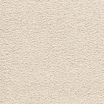 Cozy Comfort - Quiet Neutral From Mohawk Carpet