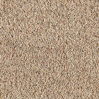 Serene Selection - Flaxen From Mohawk Carpet