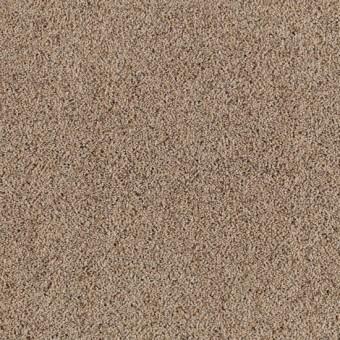 Serene Selection - Boardwalk From Mohawk Carpet