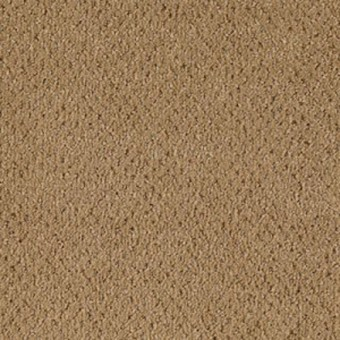 Comfortably Classic - Aged Brass From Mohawk Carpet