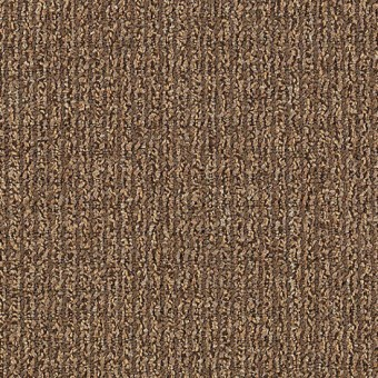 Real Elements - Textural Beige From Mohawk Carpet