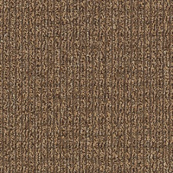 Real Elements - Neutral Value From Mohawk Carpet