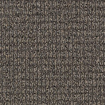 Real Elements - Tinted Gray From Mohawk Carpet