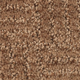 Defined Design - Ginger Bark From Mohawk Carpet