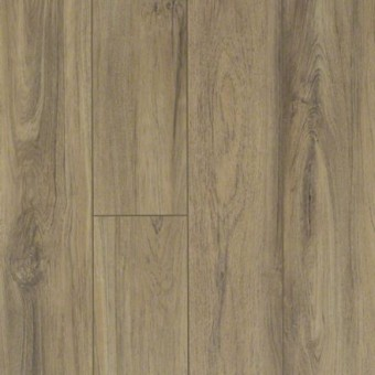 Pantheon HD Plus - Fiano From Shaw Tile
