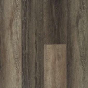 Titan HD Plus - Plato Oak From Shaw Tile