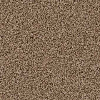 Cedar Creek Dreamweaver Carpet Save 30 50