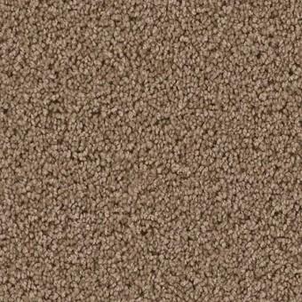 Cedar creek dreamweaver carpet save 30 50 for Cedar creek flooring