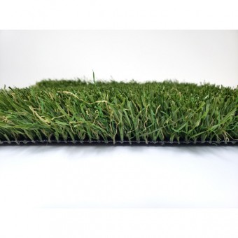 Coastal Premium - Olive and Spring From Shawgrass