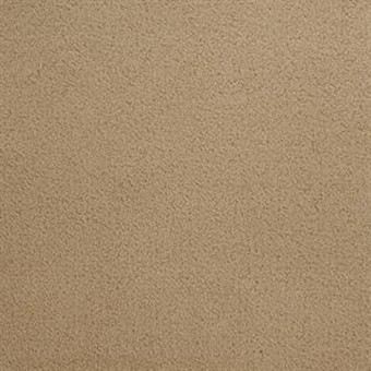 Penley Estates - Palomino From Dixie Home