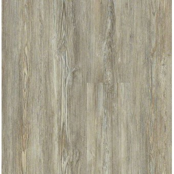 Basilica Plus - Legend Pine From Shaw Tile