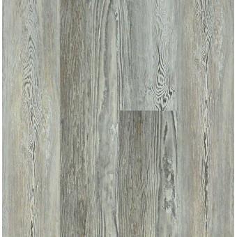Basilica Plus - Ashland Pine From Shaw Tile