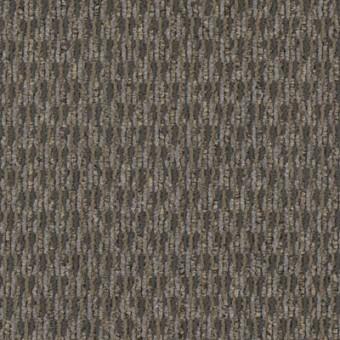 Ruminate - ASSUME From Mohawk Carpet