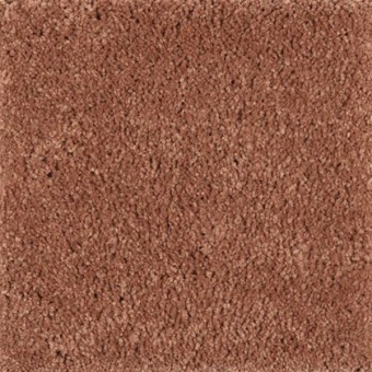 Pleasant Nature - Baked Amber From Mohawk Carpet